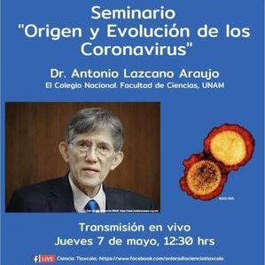 Esta imagen tiene un atributo ALT vacío; su nombre de archivo es origen-y-evolucion-de-los-coronavirus.jpg